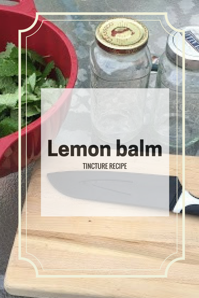 Lemon balm tincture recipe