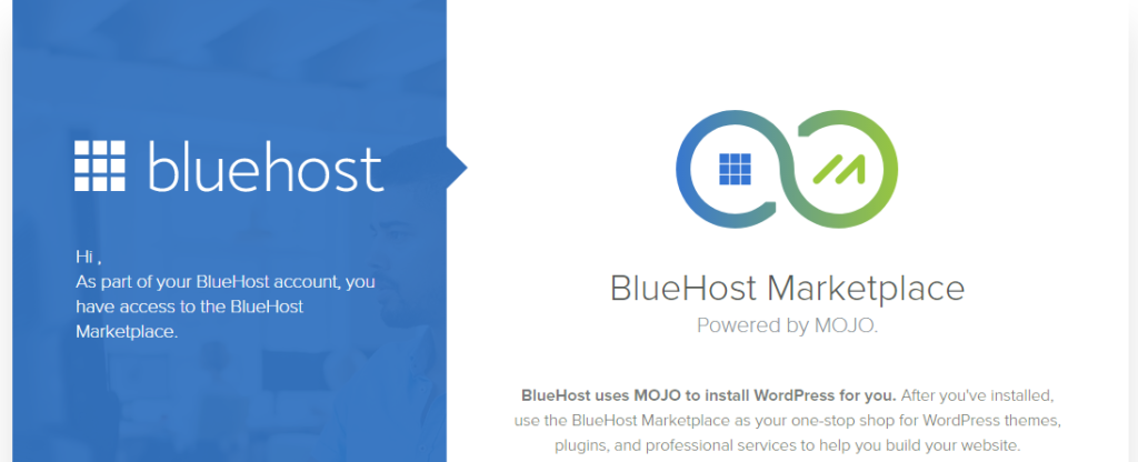Bluehost 9