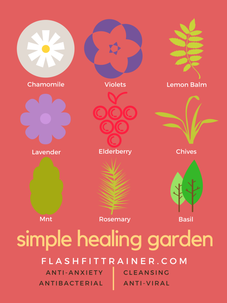 Plant a simple healing backyard garden with herbs and medicinal plants